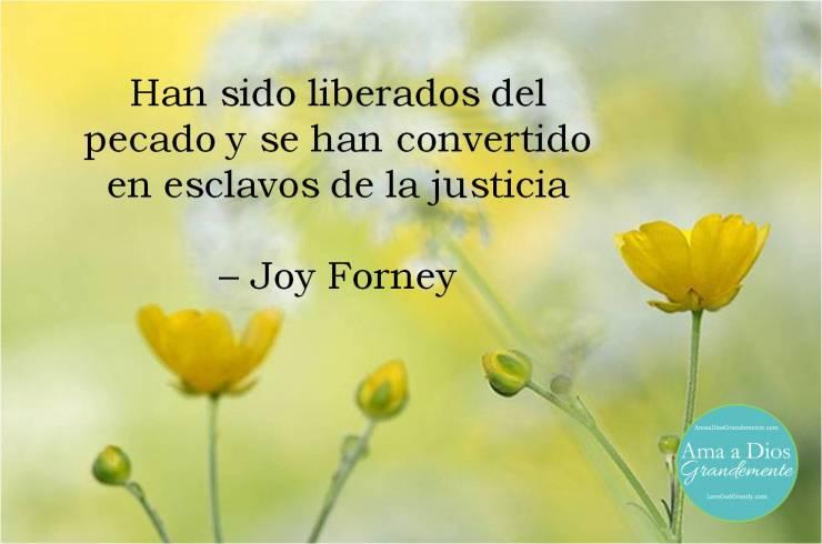joy viernes 3