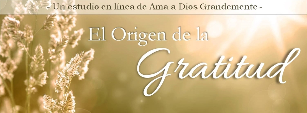 banner facebook el origen de la gratitud