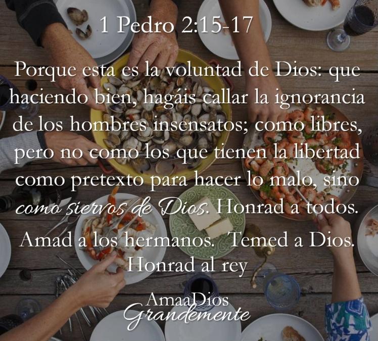1 Pedro 2-15-17