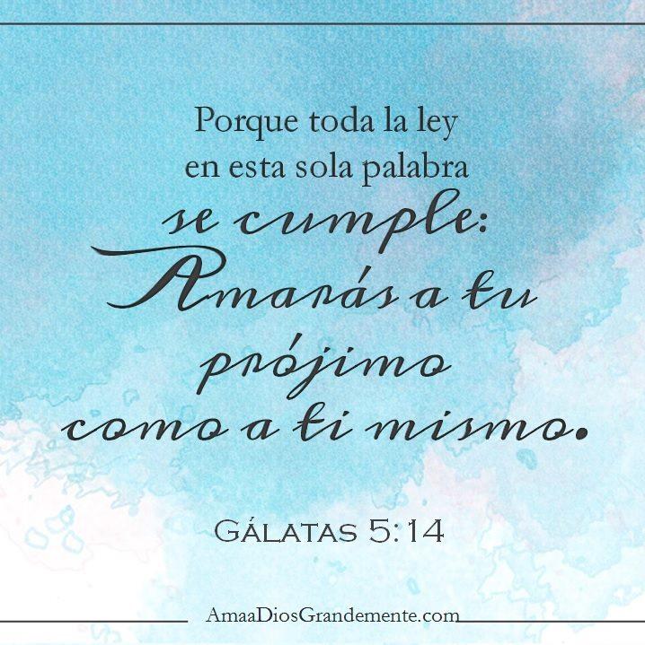 versículo para memorizar gálatas semana 5