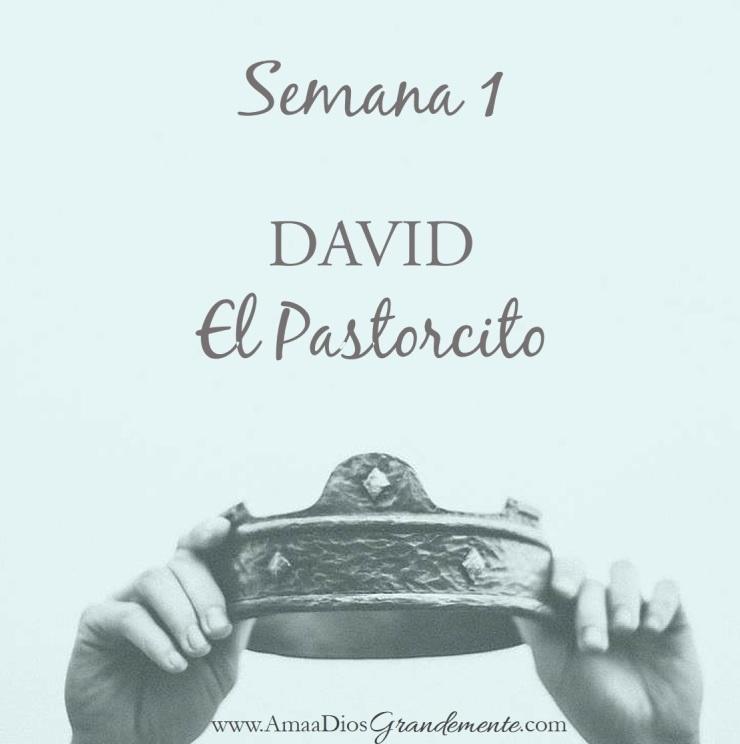 SEMANA 1 DAVID