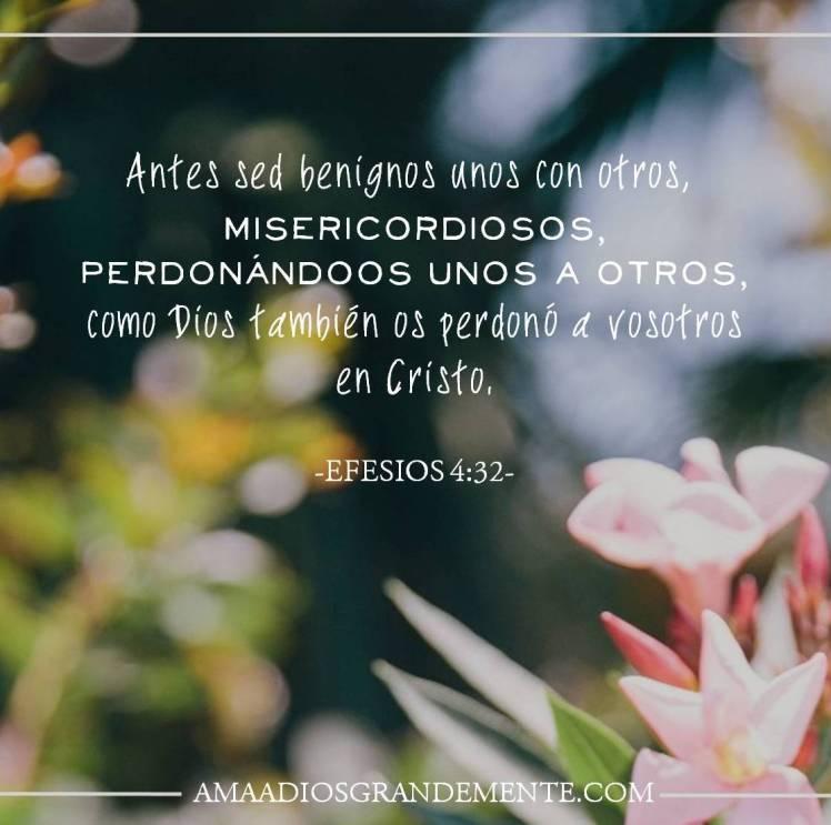 David Biblia #ComunidadADG